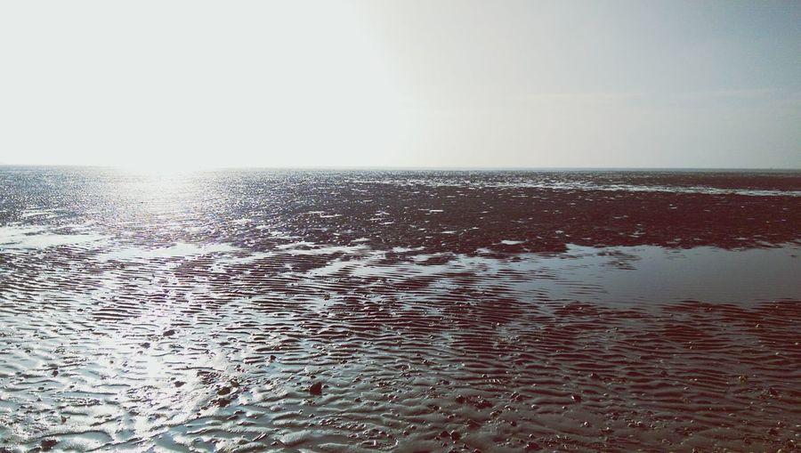 Nordseelust.
