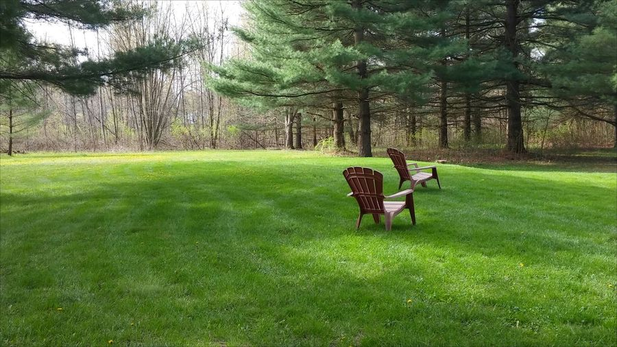 Empty adirondack chairs on grass in park