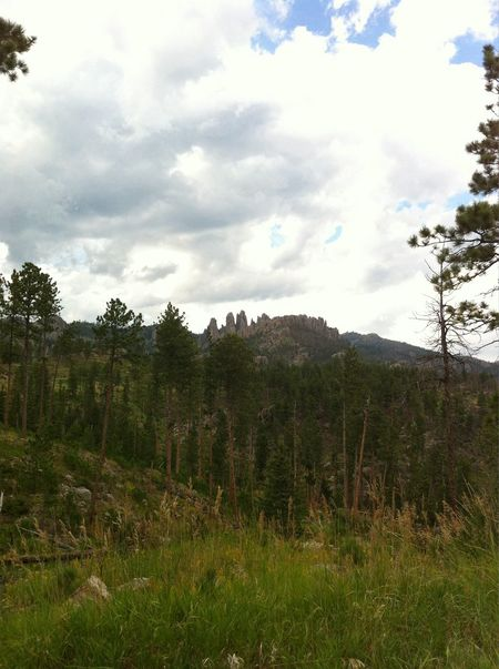 The Needles Highway, Custer National Park