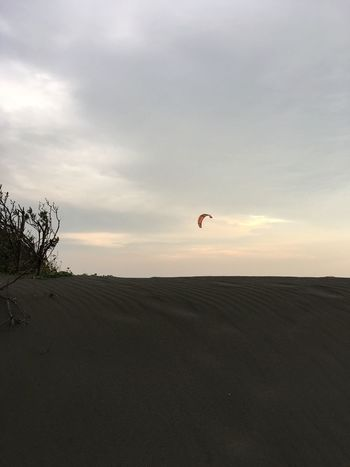 Sky Nature One Person Parachute Extreme Sports Scenics Outdoors Real People Adventure Landscape Beauty In Nature Sunset Paragliding Day People