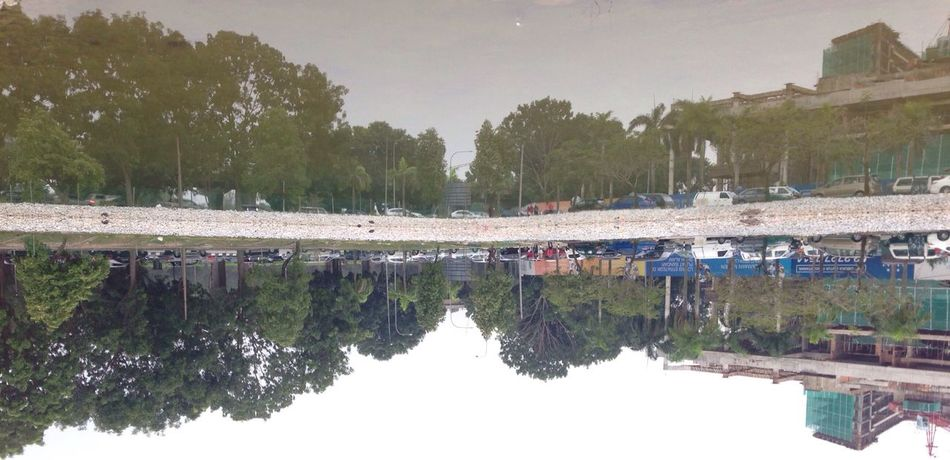 Let them flow upside down! Tree Water Reflection Architecture Building Exterior Built Structure Standing Water Clear Sky Calm Waterfront Nature Growth Tranquility Tranquil Scene Canal Day Sky Scenics Outdoors Water Surface
