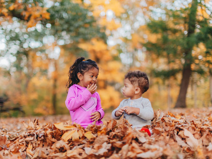 Smiling kids sitting on autumn leaves outdoors