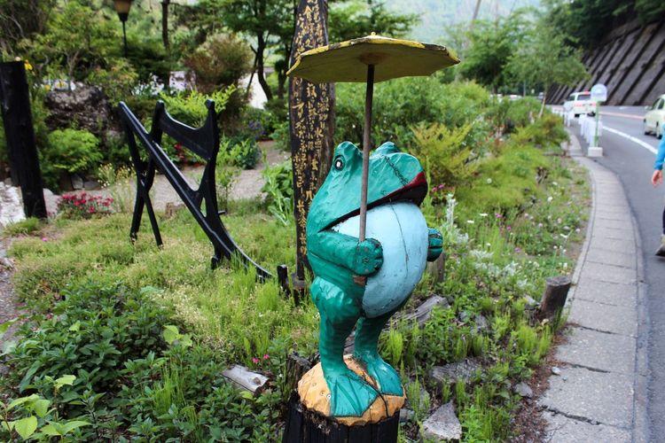 雨蛙? Frog Statue Umbrella Funny Garden