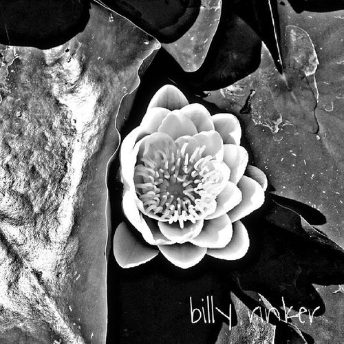 Ignature Instag_bw Igersdeutschland Ig_cameras_united_bw ig_flowers_bw @Instag_app hdr hdriphoneographer hdrspotters hdrstyles_gf hdri hdroftheday hdriphonegraphy hdrepublic hdr_lovers awesome_hdr instagoodhdrphotography photooftheday hdrimage hdr_gallery hdr_love hdrfreak hdrama hdrphoto hdrfusion hdrmania hdrstyles ihdr str8hdr hdr_edits