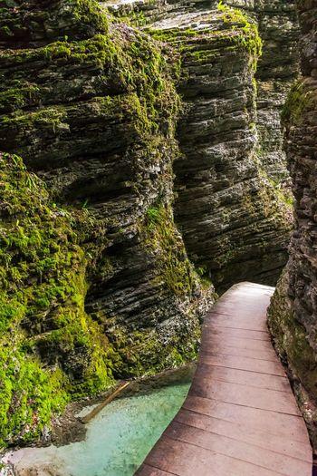 Canyon trail towards Kozjak waterfall in Slovenia. Rock Formation Canyon Water Shadow Sunlight Grass Moss Growing Walkway Pathway Stream Narrow Green