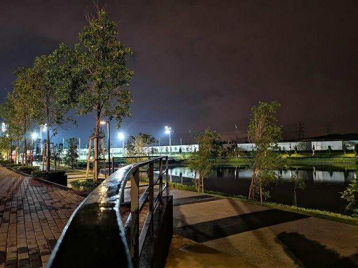 Night Night Ensem City Tree Illuminated Water Bridge - Man Made Structure Sky Park - Man Made Space