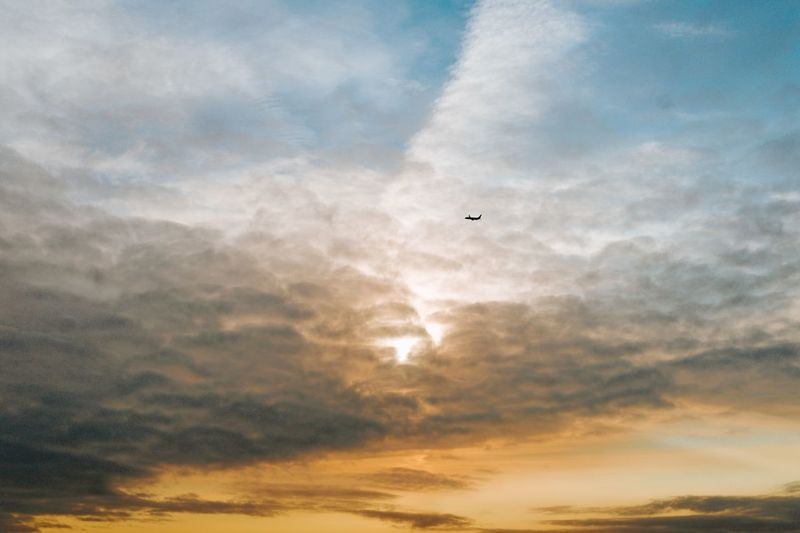 Blue and orange sky with clouds and airplane Minimalist Minimalism Airplane In The Sky Blue And Orange Sky Cloud - Sky Sky Flying Sunset Animal Beauty In Nature Animal Themes Scenics - Nature