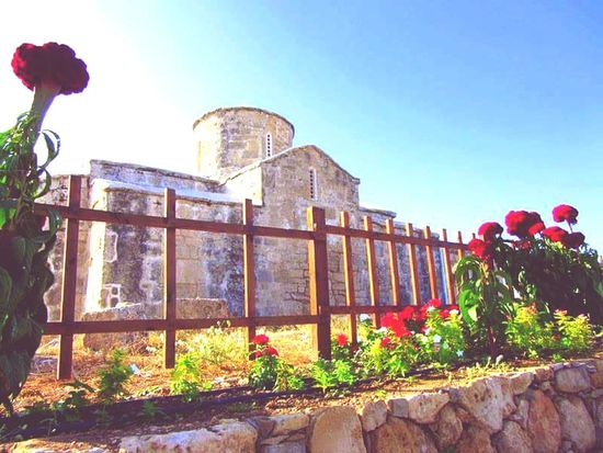 Building Exterior Architecture Flower Built Structure Outdoors Day Tatlisu Cyprus