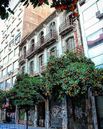Vintage Building Architecture Old Abandoned History Details Balcony Awesomebuilding Beautiful Trees Green Orangetrees Stores Graffiti Road Downtown City center Street photography Photography Canon700D Thessaloniki Greece Skg