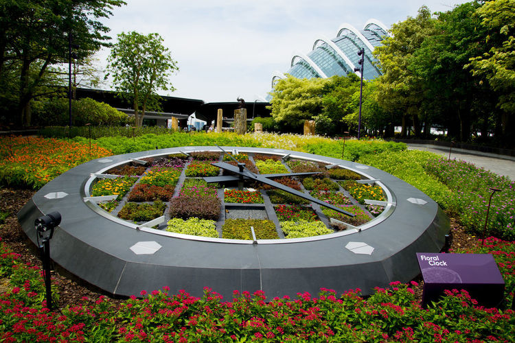 Floral Clock Floral Clock Singapore City Gardens By The Bay Garden
