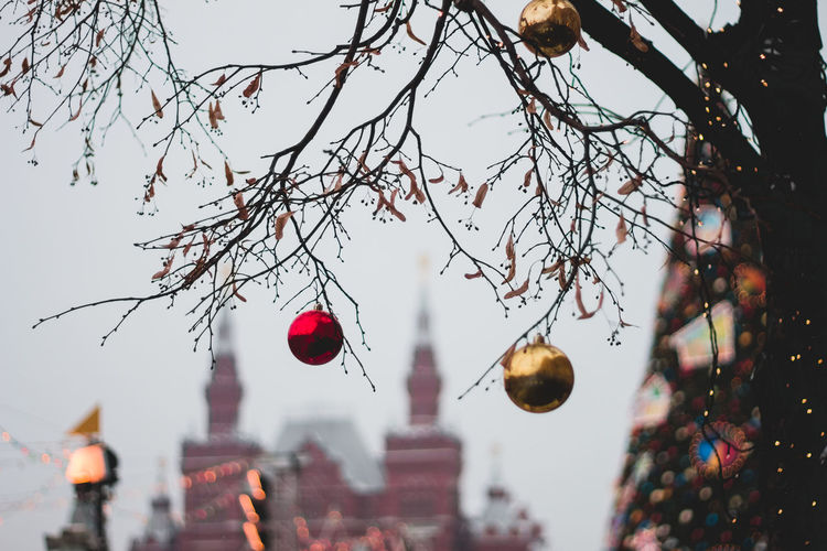 Balls Bare Tree Branch Celebration Christmas Decorations City Focus On Foreground Low Angle View Outdoors Tree
