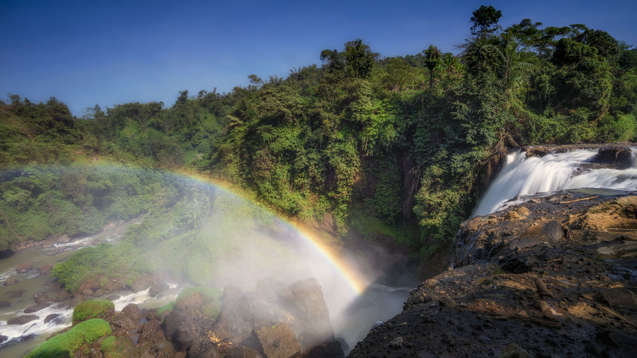 Waterfall rainbow dadali Tree Scenics - Nature Plant Water Beauty In Nature Waterfall Nature Flowing Water Long Exposure No People Motion Non-urban Scene Tranquil Scene Environment Land Tranquility Day Forest Blurred Motion Outdoors Flowing Power In Nature Dadali Waterfal INDONESIA Cianjur