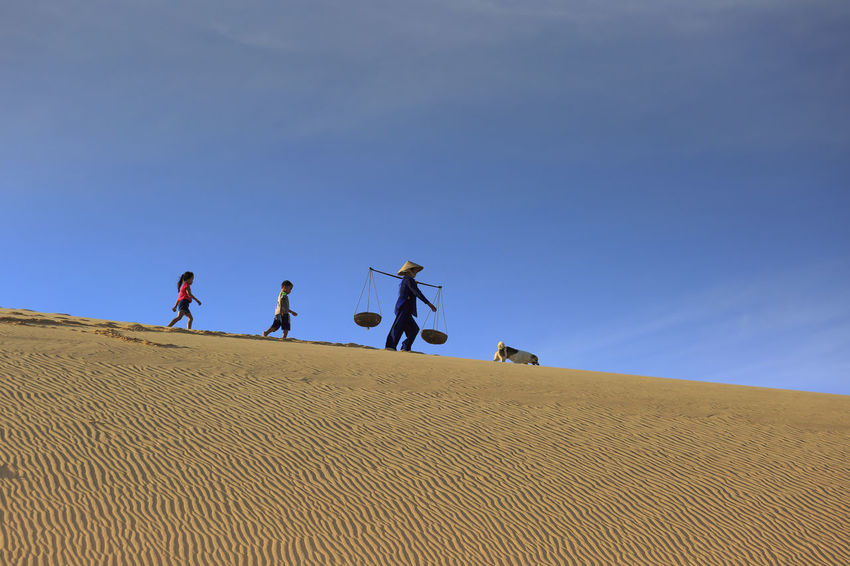 Ninh Thuan province, Vietnam - November 26, 2016 : woman carries a bamboo frame on the shoulder and two children walking home across the Mui Dinh sand dunes Ninh Thuan Province Agriculture Asian  Background Bamboo Frame Carry Children Conical Hat Culture Desert Dog Dunes Sand Happy Hill Horizon Joyful Kid Lake Nature Outdoors Sand Sunny Tourism Travel Village Walk