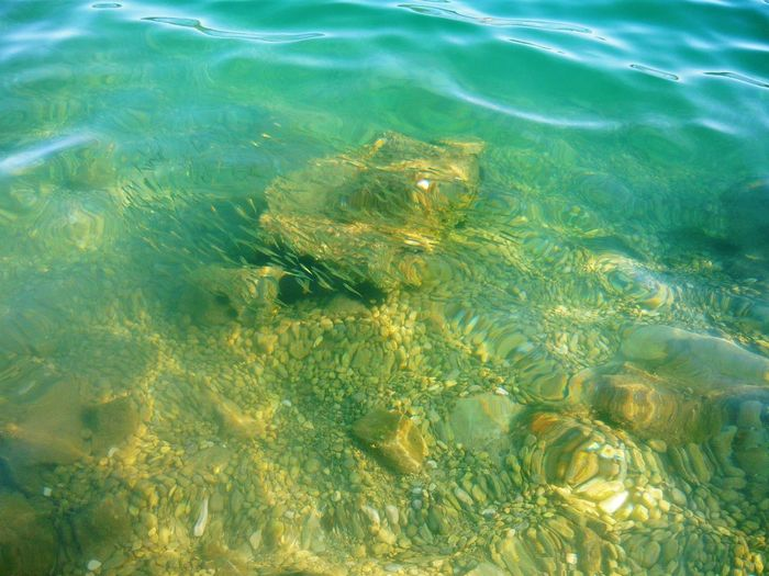 Beauty In Nature Blue Clear Day Floating On Water Freshness Full Frame High Angle View Nature Non-urban Scene Ocean Outdoors Purity Refraction Rippled Sea Shallow Swimming Tranquility Transparent Underwater Water Water Surface Waterfront Wave Pattern