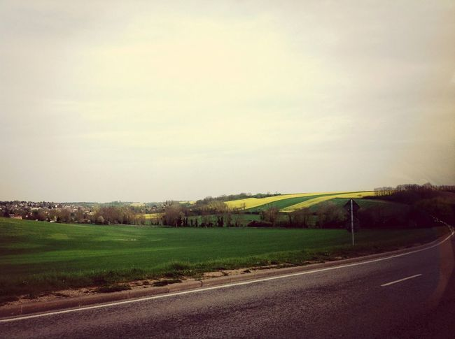 Me rouler dans ce champs seras un rêve d'enfant... Enjoying Life