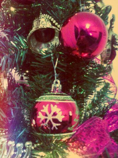 Pontodevista Photpgraphy Christmas Olhardebolso