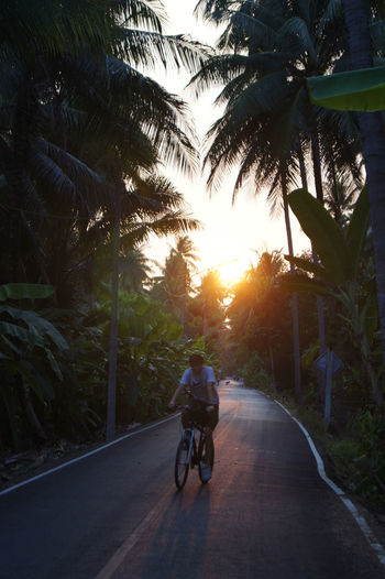 People riding bicycle on road at sunset