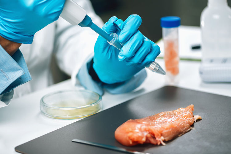 Antibiotics in poultry meat. quality control expert testing chicken meat sample
