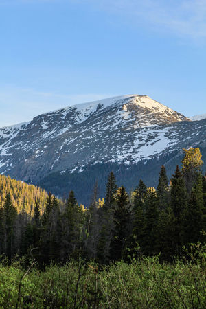 Colorado Colorado Photography Beauty In Nature Cold Temperature Colorado Mountains Day Forest Landscape Mountain Mountain Range Mountains Nature No People Outdoors Pine Tree Scenics Sky Snow Snowcapped Mountain Tall Trees Tranquil Scene Tranquility Tree Winter