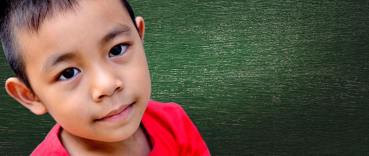 Portrait asia boy ASIA Family Green Happy Smart Attitude Blackboard  Boys Child Childhood Concept Contemplation Cute Education Emotion Face Future Headshot Innocence Leisure Activity Lifestyles Men Model Mood Portrait