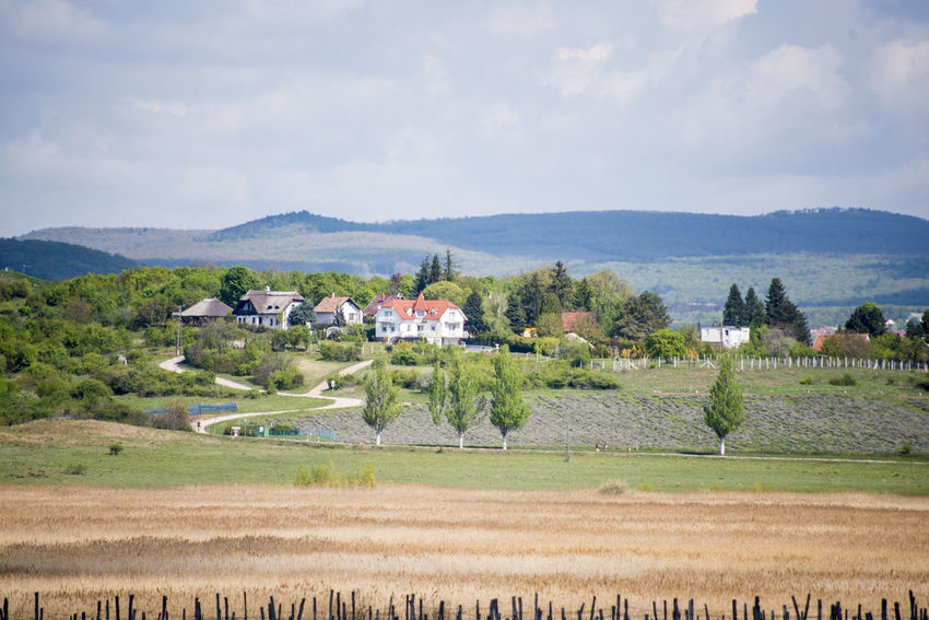 Agriculture Building Exterior Built Structure Farm Field House Hungary Landscape Mountain Mountain Range Patchwork Landscape Rural Scene Scenics Tihany Tranquil Scene Tree
