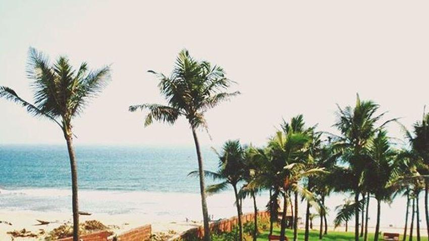 Bayofbengal Gopalpur Beach Sun Sand Sea Coconut Trees Taken Fromthearchives Throwback Thursday LongTimeAgo  Sunny Noedit Nofilter Naturalshot Amateurphotography Camerateur Indianphotographersclub Indiatravelgram Sobhubaneswar Odisha Ig_odisha Ig_india Odishagram odi_igers