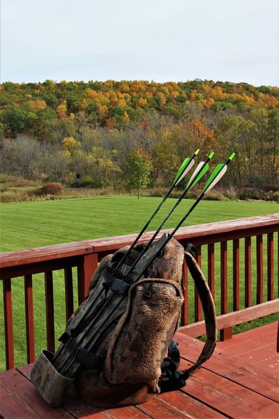 our back deck leads to hunting grounds - husband has come in for a mid day break but ready to head right back out to be ready for that giant buck he is dreaming of Be. Ready. Arrows Autumn Camoflauge Day Grass Green Color Hunting Hunting Blind Nature No People Outdoors Quiver Tree