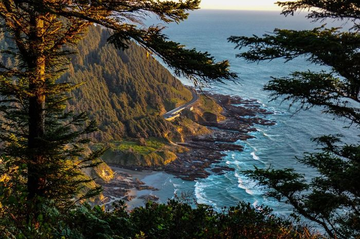 Cape Perpetua looking south to Highway 101 Devils Churn Cooks Chasim Sprouting Horn and Stringer Bridge Over Cape Perpetua Chasm . Bridges Bridgeporn Oregon Sony A6000