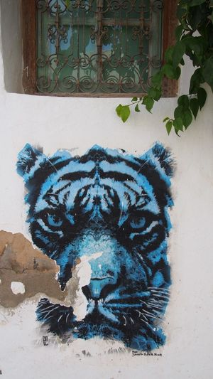 View of graffiti on wall