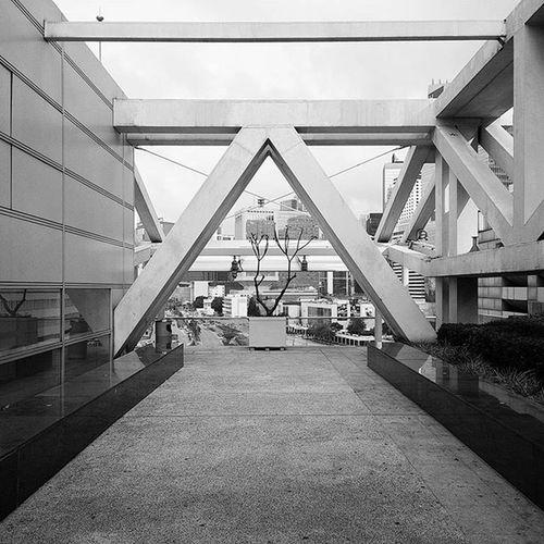 🔺 Greyscale Architecture Blackandwhite Roof Hkig Triangle Imobviouslyboredofrevision Instameethk
