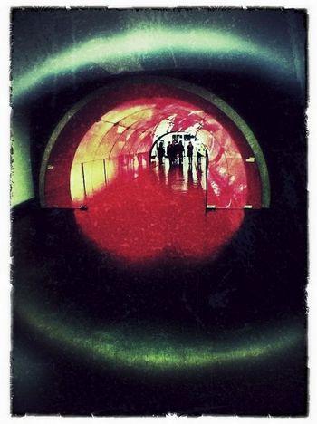 The intruders. iPhone 4, Olloclip fisheye, iPad
