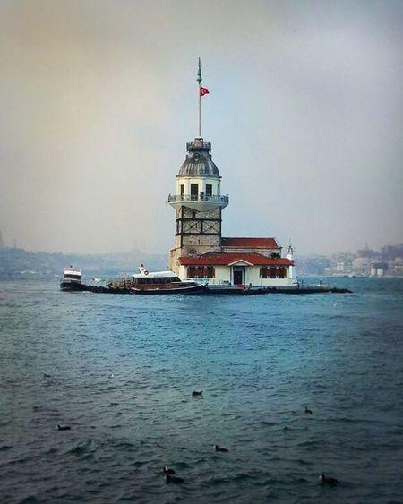 Istanbulstreetphotography Maiden Tower Sea EyeEm Ducks Sea And Sky ıstanbul, Turkey üsküdarmanzarası ViewofÜsküdar