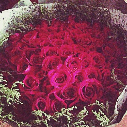 Enjoying Life rose