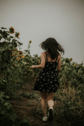 Rear view of young woman running at sunflower farm
