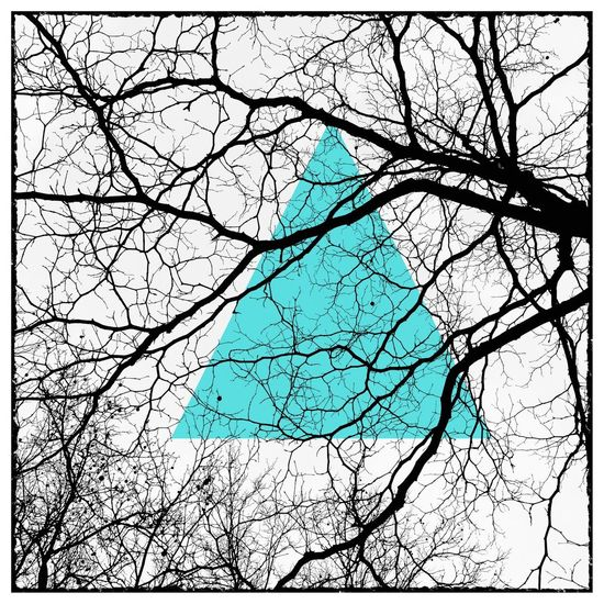 Kreativ Abstract Tree No People Backgrounds Branch Pattern Full Frame Plant Bare Tree Nature Cracked Outdoors Day Sky Blue