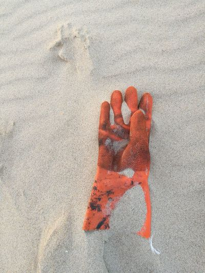 Red Sand Day Outdoors No People Gant Perdu Abandoned Mains Hand Objets De Plage Colour Your Horizn