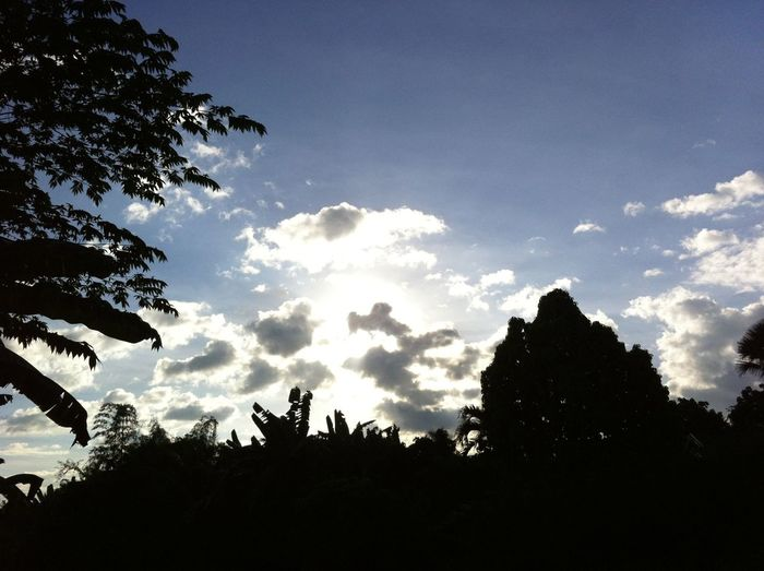 Good Morning Thursday! Eyeem Philippines Photography Eye4photography EyeEm Best Shots