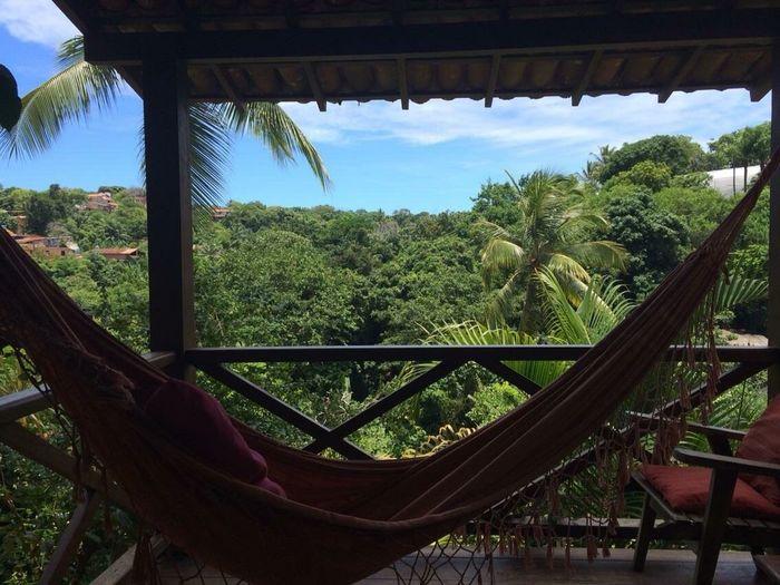 Tropical Relaxing Hammock Brazil Brasil Morro De São Paulo Traveling Love Nature