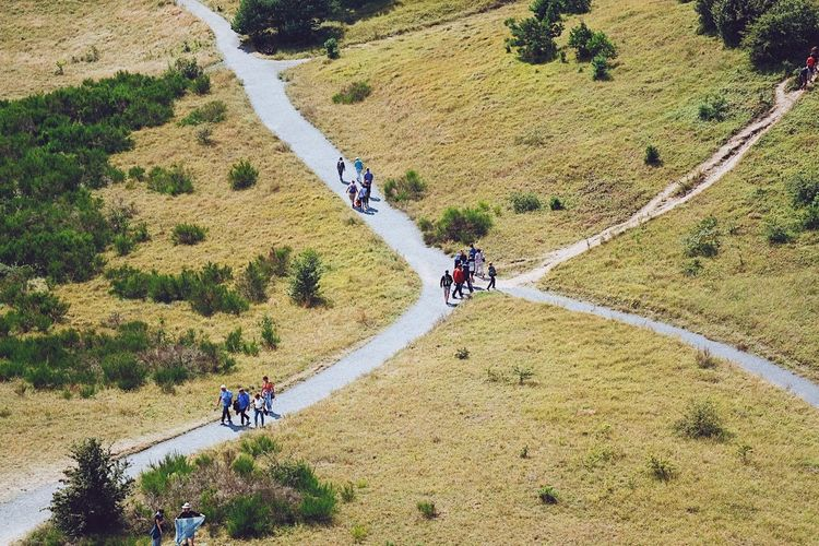 High angle view of people riding bicycle on road
