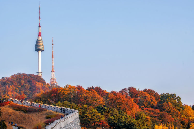 Namsan Tower and autumn maple tree mountain in Korea. Architecture Autumn Background; Sky; Autumn; Travel; Seoul; Namsan; Beauty In Nature Building Exterior Built Structure Change Communication Day Korea; Tower; City; Park; View; South; Background; Sky; Autumn; Travel; Landscape; Asia; Landmark; Mountain; Asian; Cityscape; Korean; Nature; Skyline; Night; Architecture; N; Sunset; Urban; Scene; Scenery; Beautiful; Blue; Building; Modern; White; Touris Leaf Nature No People Outdoors Seoul; Namsan; Korea; Tower; City; Park; View; South; Sky Television Tower Tower Tree