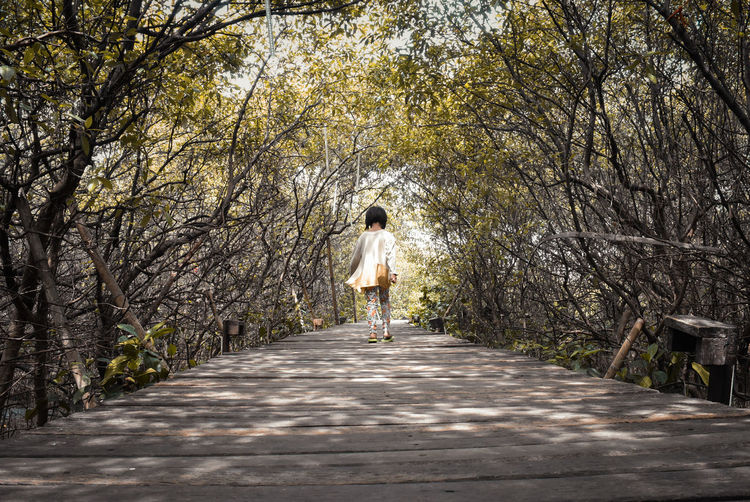 Tree One Person Rear View Plant Full Length Real People Lifestyles Direction The Way Forward Leisure Activity Day Nature Footpath Walking Casual Clothing Women Growth Diminishing Perspective Transportation Outdoors Treelined