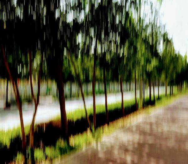 ICM Intentional Camera Movement Impressionism In Photography Shapes , Lines , Forms & Composition Trees And Nature Atmospheric Mood Impressionist Effect Impressionism Painting With A Camera Urbanphotography Nature Abstract Landscape Outdoors Urban Landscape Icm Art Is Everywhere Break The Mold Neighborhood Map Kish Island The Street Photographer - 2017 EyeEm Awards Neon Life The Week On EyeEm Perspectives On Nature Photo Impressionism See The Light