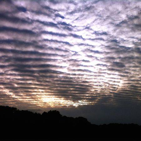 {berlin skies 1} Berlinsky Sky And Clouds Sky_collection Sunsets Evening Sky Cloudporn Naturelovers