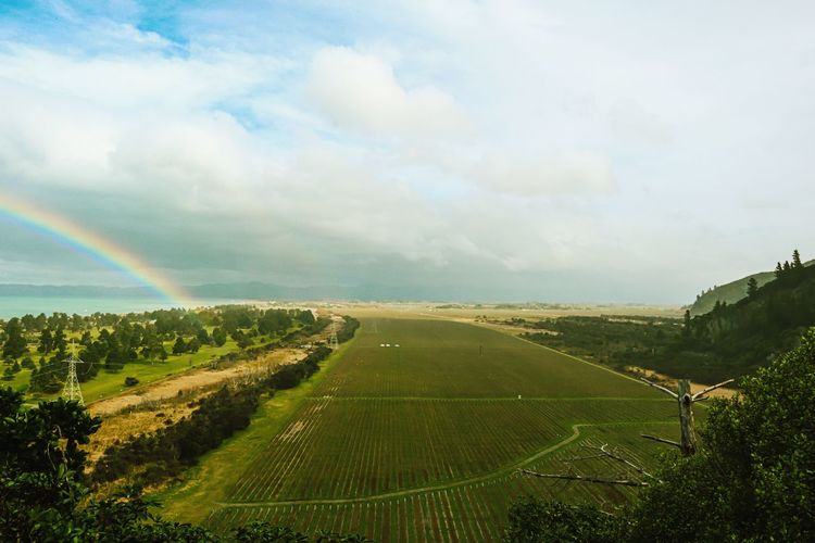 Scenic view of agricultural field against rainbow in sky
