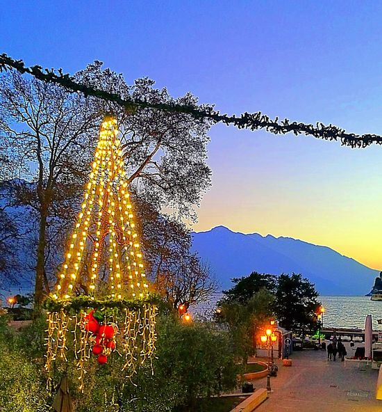 Tree Christmas Tree Sky No People Christmas Outdoors Christmas Lights Christmas Decoration City Illuminated Day Nature Water Beauty Photography Tranquil Scene Italy Scenics Tranquility Mountain Beauty In Nature Multi Colored Sunset Landscape Gardalake