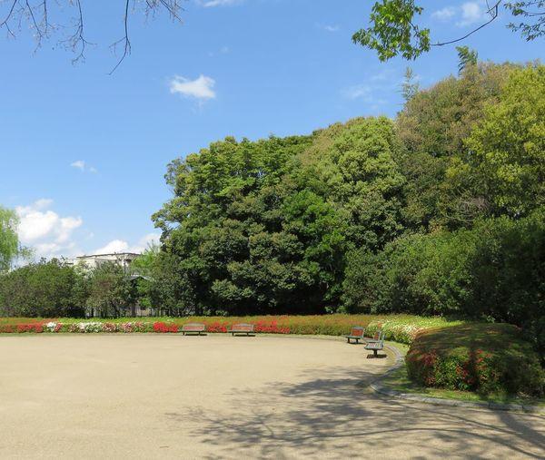 Park Chair 風景