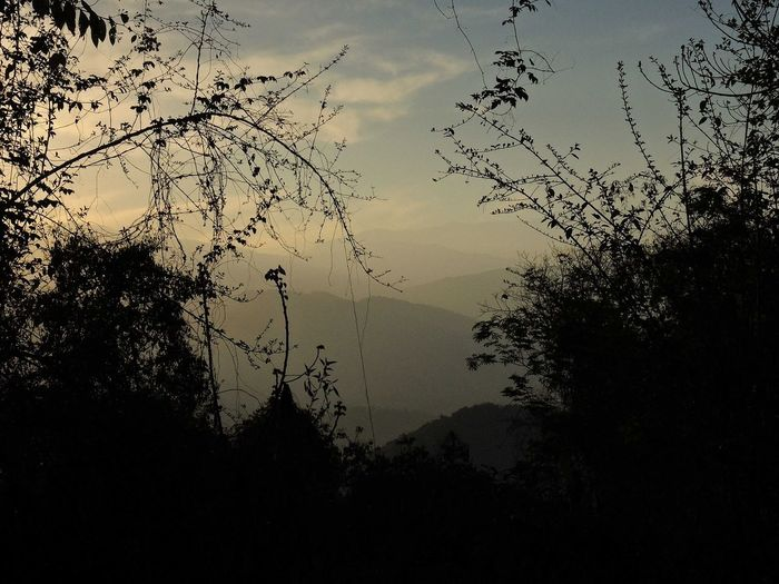 Landscape near to Yerba Buena, Tucumán, Argentina. 2016/09/15. Argentina Beauty In Nature Branch Calm Cloud - Sky Dark Growth Majestic Mountain Mountain Range Nature No People Non-urban Scene Outdoors Outline Remote Scenics Silhouette Sky Tourism Tranquil Scene Tranquility Tree Tucumán  Valley