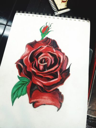 My rose. The Interview piece. Rosé Prisma Art Prisma Red Petal Close-up No People Illbebacksoon IAmAnArtist Flower Head Lifeisbeautiful Enjoyment Happiness EyeEm Selects Tattoos EyeEm New Here Flower Drawing ArtWork