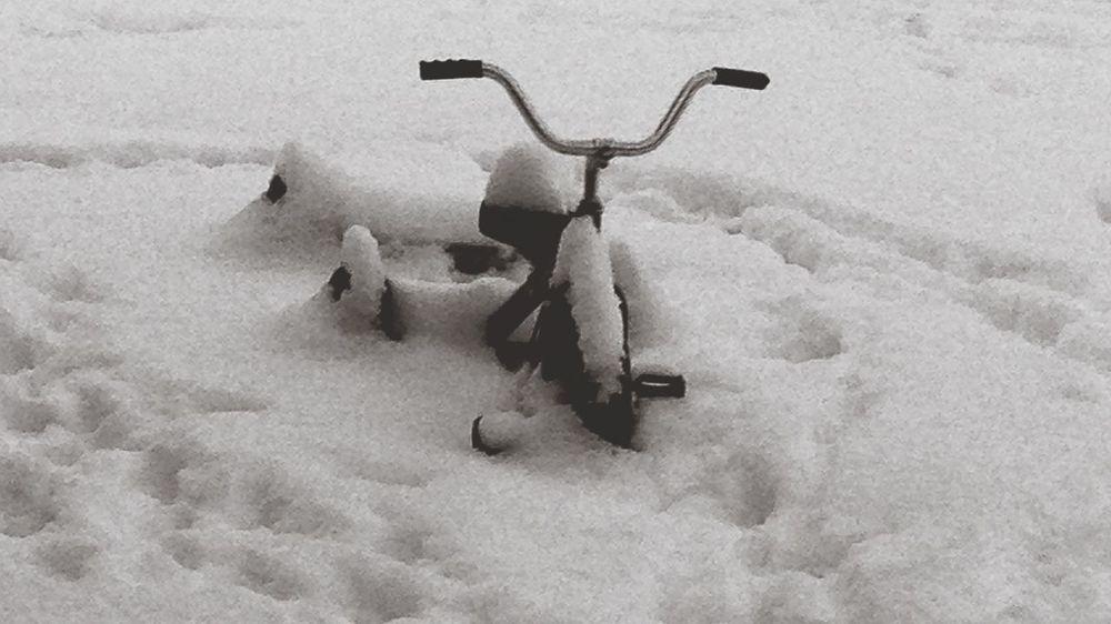 Snow Bike Snowing First Snow Storm January