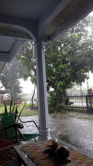 Rain Rainy Days Rainy Rain☔
